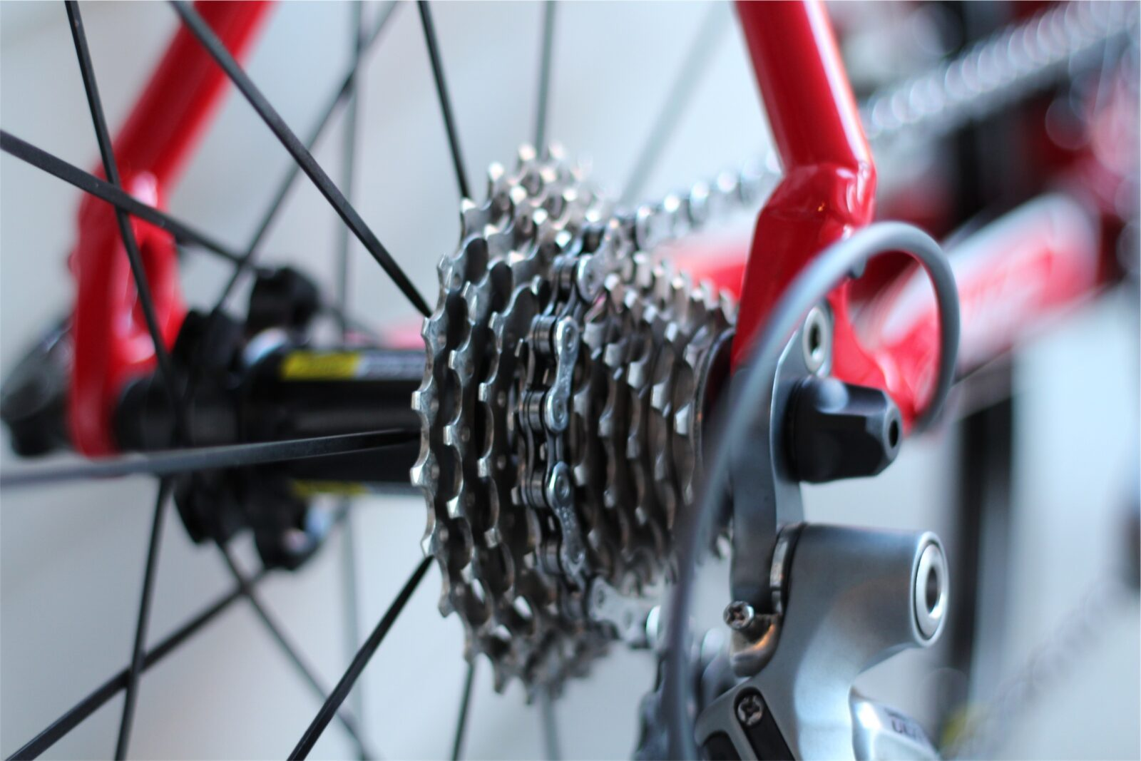 What to do if You are Injured in a Bicycle Crash