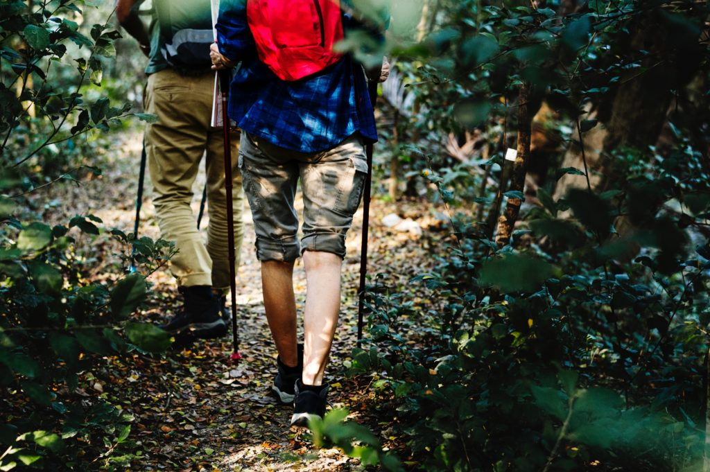 What Happens if You Are Injured at a State or National Park?